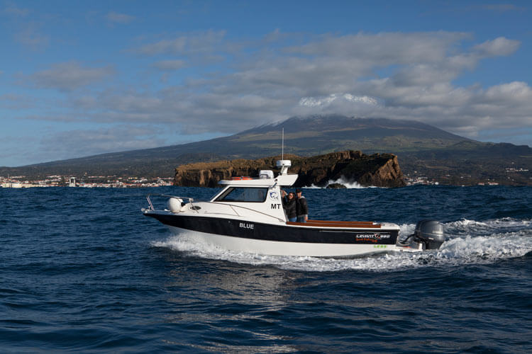 Spearfishing trips to The Azores