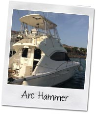 Arc hammer spearfishing boat
